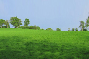 field lets at newdigate farms estate