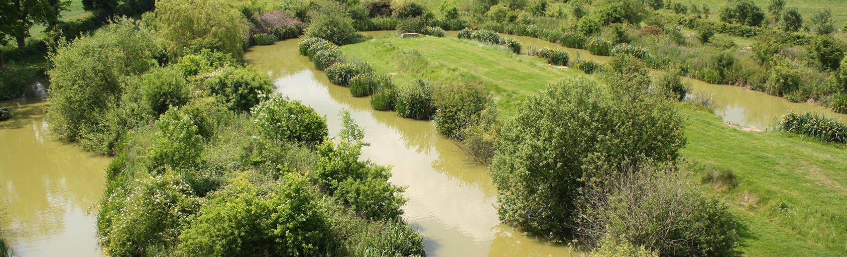 snake fishing lake - newdigate farms estate